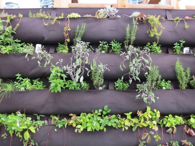 Vertical Vegetable Gardening Systems